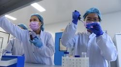 """Từ đầm lầy đến """"thung lũng Silicon"""" của Việt Nam"""