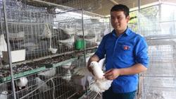 Bắc Ninh: Tiếp sức đam mê làm giàu của nông dân trẻ