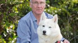 """Chú chó Husky gây sốt khi trở thành """"anh hùng"""" cứu trẻ sơ sinh"""