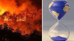 Sự suy giảm đa dạng sinh học sẽ khiến con người đứng trên bờ vực thẳm