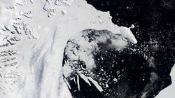 Thềm băng lớn thứ tư ở Nam Cực sẽ sớm bị sụp đổ