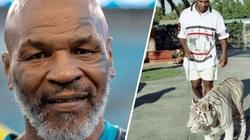 """Mike Tyson nuôi hổ để """"cấn nợ"""", từng khiến hàng xóm... cụt tay"""