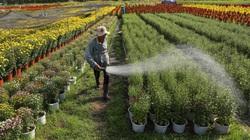Cách tính tiền sử dụng đất khi chuyển từ đất nông nghiệp sang đất thổ cư