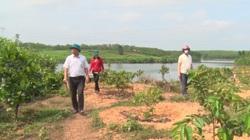 Quảng Trị: Bỏ trồng tràm, anh nông dân chuyển sang mô hình nông lâm hiệu quả, kinh tế cao