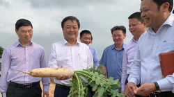 """Ông Lê Minh Hoan- """"Kiến trúc sư"""" của Hội quán nông dân làm Bộ trưởng Bộ NNPTNT"""