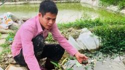 Ninh Bình: Kỹ sư xây dựng cất bằng về quê đào ao chạy quanh những luống rau trái vụ, thu 800 triệu/năm