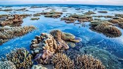 Du lịch mùa hè: Những bãi biển hoang sơ tuyệt đẹp nào để bạn trốn cái nóng?