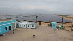Bình Định: Khánh thành nhà máy năng lượng mặt trời hơn 6.200 tỷ đồng