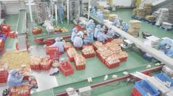 """Nguyễn Văn Thành- Vị doanh nhân """"hô biến"""" rong biển thành sản phẩm mang thương hiệu quốc gia"""