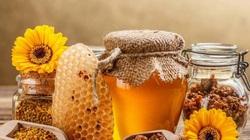 Lần đầu tiên, mật ong Việt Nam đứng trước nguy cơ bị Mỹ điều tra chống bán phá giá