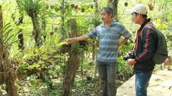 Khu bảo tồn hoa lan rừng độc nhất vô nhị ở Tây Nguyên nằm ở tỉnh nào?