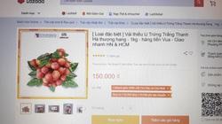 Vải thiều Thanh Hà lên sàn thương mại điện tử, u trứng trắng thượng hạng giá lên tới 150.000 đồng/kg?