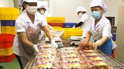 Nhật Bản ủy quyền cho Việt Nam làm một việc, loại quả tiến vua này nhiều cơ hội rộng đường xuất khẩu
