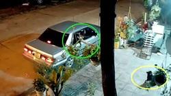 """VIDEO: """"Cẩu tặc"""" đi ô tô bắn súng điện trộm chó táo tợn"""