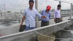 Nam Định: Vào Hội Nông dân, hội viên được vay vốn, làm ăn hiệu quả