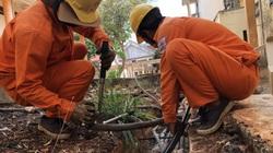 PC Đắk Lắk: Đảm bảo cấp điện cho các bệnh viện, trung tâm y tế và cơ sở cách ly