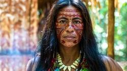 Não của thổ dân Amazon có tốc độ lão hóa chậm hơn 70% so với người châu Âu?