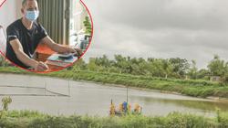 Nam Định: Anh nông dân thả la liệt cá, nuôi hàng trăm con lợn, mỗi năm thu nhập cả tỷ đồng