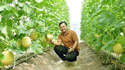 Chàng thanh niên 9X tại Cà Mau kiếm 2 tỷ mỗi năm nhờ mô hình nông nghiệp sạch