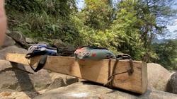UBND tỉnh Lào Cai chỉ đạo Công an vào cuộc điều tra vụ phá rừng Vườn quốc gia Hoàng Liên