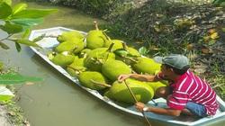 Giá mít Thái hôm nay 9/5: Giá mít Kem tăng, nông dân trồng mít Thái bớt lo vì thị trường Trung Quốc mua nhiều?
