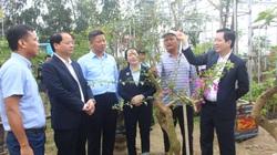 Ủy viên Trung ương Đảng Lương Quốc Đoàn: Nỗ lực hết mình xứng đáng với sự tín nhiệm của cử tri, nông dân cả nước