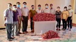Hội Nông dân tỉnh Ninh Bình tiêu thụ giúp 16,5 tấn hành tím cho nông dân Sóc Trăng