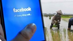 Báo Nhật: Việt Nam dẫn đầu thế giới về livestream bán hàng trên Facebook
