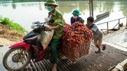Bắc Giang: Bố trí lực lượng sinh viên tình nguyện hỗ trợ người dân qua cầu phao hiểm nghèo