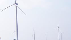 Gia tăng nạn trộm cắp thiết bị tại dự án điện gió: Tỉnh Bạc Liêu lập chuyên án điều tra