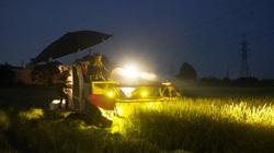 """Bắc Ninh: """"Thần tốc"""" gặt lúa trong đêm giúp dân giữa tâm dịch Khắc Niệm"""