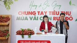 """Quyền Linh lần đầu livestream bán loại quả đỏ rực, được tặng ngay một bó hoa vải thiều """"có một không hai"""""""