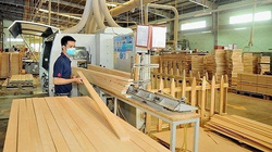 Ấn Độ tiến hành rà soát chống bán phá giá ván sợi Việt Nam nhập khẩu
