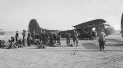 Chiến dịch đổ bộ Sicily: Mỹ - Anh bắn nhầm nhau, 300 lính thiệt mạng