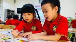 Vì sách giáo khoa mới, có nên ồ ạt cho trẻ đi học tiền lớp 1?