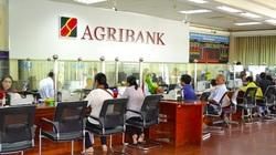 Agribank tăng gấp đôi quy mô gói tín dụng ưu đãi khách hàng bị ảnh hưởng bởi Covid-19