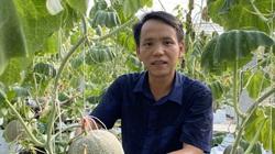 """Thái Nguyên: """"Lạc"""" vào vườn đầy trái ngọt vạn người mơ của chàng kỹ sư đam mê nông nghiệp công nghệ cao"""