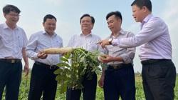 """Bộ trưởng Lê Minh Hoan mong các nhà khoa học nông nghiệp không """"hành chính hóa"""" hoạt động nghiên cứu"""