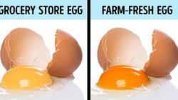 9 mẹo kiểm tra bạn đang ăn thực phẩm sạch hay bẩn
