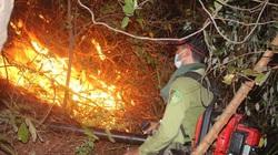 Thừa Thiên Huế: Tiếng nổ trong 2 vụ cháy rừng nghi do đạn, mìn sót lại sau chiến tranh