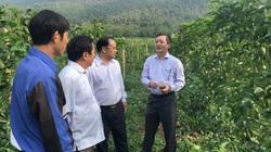 Chủ tịch BCH T.Ư Hội NDVN Lương Quốc Đoàn: Dân Việt - tờ báo của nông dân, vì nông dân