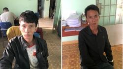 Lâm Đồng: Hai anh em táo tợn bắt trộm bò to bự của người dân đem bán lấy tiền tiêu