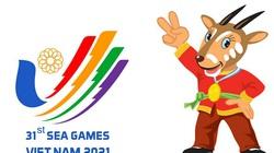 UB Olympic Việt Nam đề xuất hoãn SEA Games 31 sang năm 2022