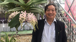 """Vụ bán giống lúa """"lạ"""" cho dân ở Hà Nội, Giáo sư Trần Duy Quý: Tôi bị mạo danh"""