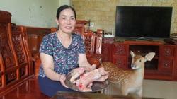 Ninh Bình: Nuôi loài thú ăn lá rừng, uống nước lã, nông dân này lãi tiền tỷ mỗi năm