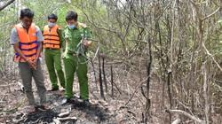 Bắt giữ nhóm đối tượng trộm cắp thiết bị tại dự án điện gió ở Bạc Liêu
