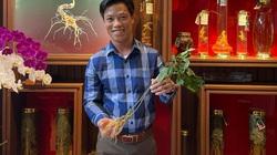 """Quảng Nam: Một doanh nghiệp được lập thủ tục thuê môi trường rừng để trồng cây """"Quốc bảo"""""""