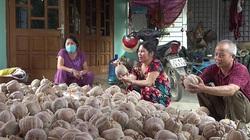 Lạ: Nông dân nơi này tăng diện tích trồng bí chỉ vì dịch Covid, doanh nghiệp về mua tận ruộng