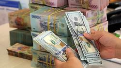 VND tiếp đà lên giá, tỷ giá USD/VND có thể đạt 23.100 vào cuối năm