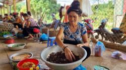 """Clip: Đi chợ mua bán các loài côn trùng lớn nhất đất Sơn La, có những """"con ăn xin"""" trông rất lạ"""